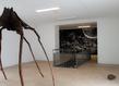 Cecile beau maison des arts de malakoff 15 1 grid
