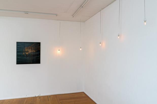 Dominique blais exposition paris xippas galerie 1 1 medium