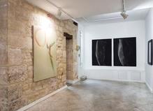 Melissa Coote, Karen Farkas—Galerie baudoin lebon