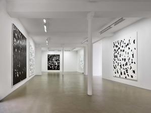 Vue de l'exposition Debris Field/Notes for a Poem on the Third World/Soleil Nègre