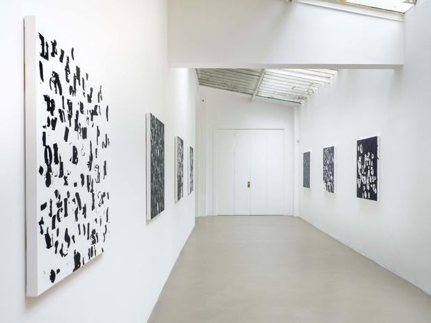 Chantal crousel glenn ligon exhibition views06 1 medium