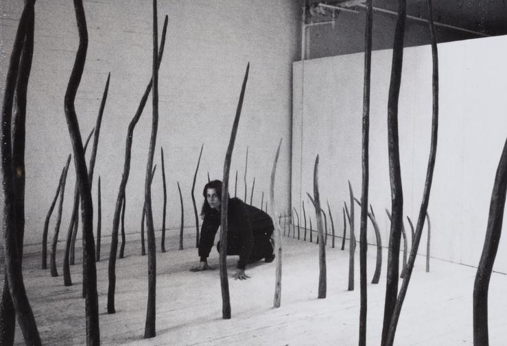 Rosemarie Castoro, Studio performance, Beaver's Trap (detail), 1977