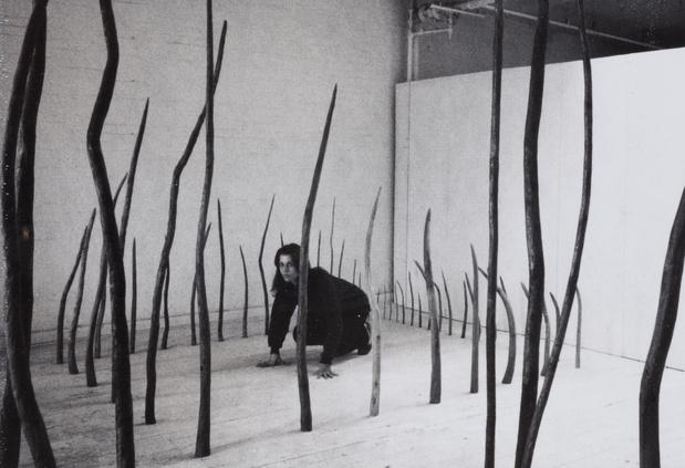 Rosemarie Castoro—Galerie Thaddaeus Ropac