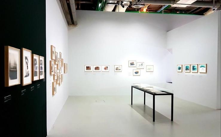 Vue de l'exposition Dora Maar, Rétrospective au Centre Pompidou, 2019