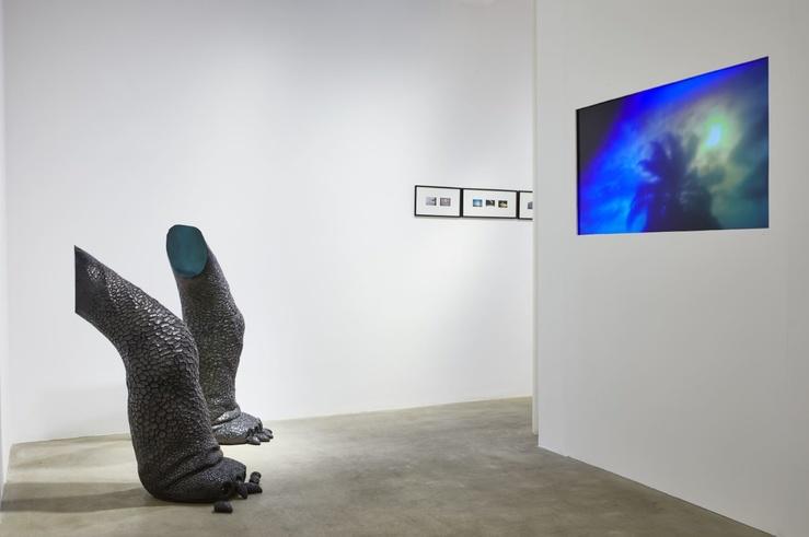 Virginie Yassef, vue de l'exposition Ils seront capables de voir les obstacles et de les contourner, galerie G-P & & N Vallois, Paris, 2019