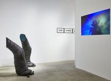 Virginie Yassef—Galerie G-P & N Vallois