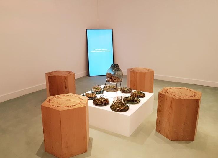 Ben Thorp Brown, Vue de l'exposition L'Arcadia Center, Jeu de Paume, programmation satellite, 2019
