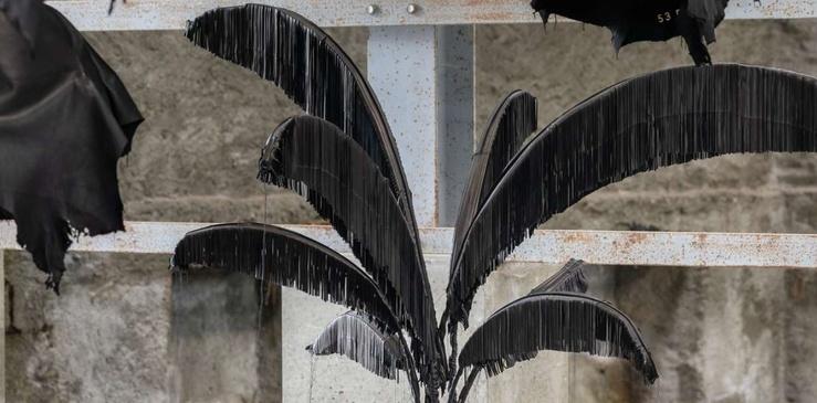 Sébastien Gouju, vue de l'exposition Contre-jour à la galerie Semiose, Paris, 2019
