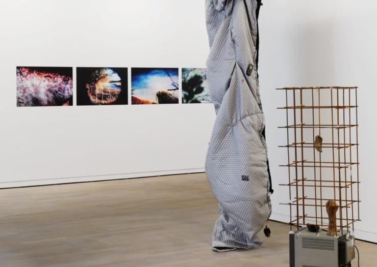 Vue de l'exposition Le fil d'alerte, 21e Prix de la Fondation d'entreprise Ricard