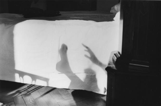 Herve guibert ombres chinoises les douches la galerie 3287 1 medium