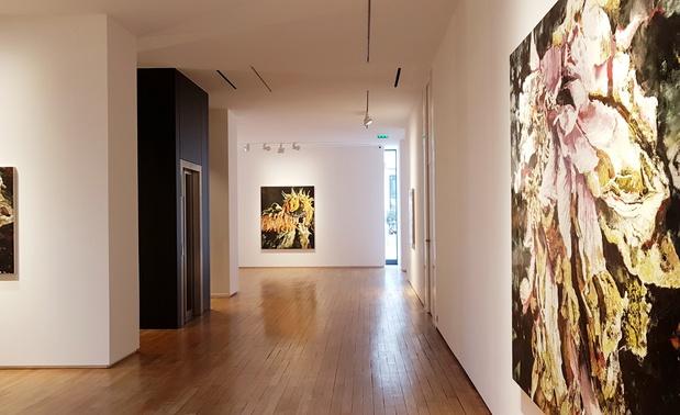 Philippe cognee galerie templon exposition 1 1 medium
