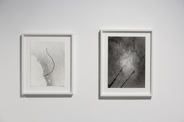 Sabine mirlesse galerie thierry bigaignon paris exposition 1 1 medium