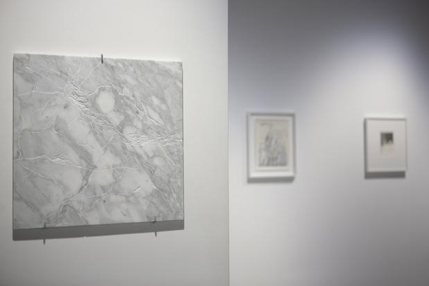 Sabine mirlesse galerie thierry bigaignon paris exposition 10 1 medium