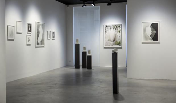Sabine mirlesse galerie thierry bigaignon paris exposition 12 1 medium