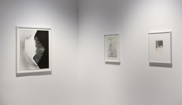 Sabine mirlesse galerie thierry bigaignon paris exposition 14 1 medium