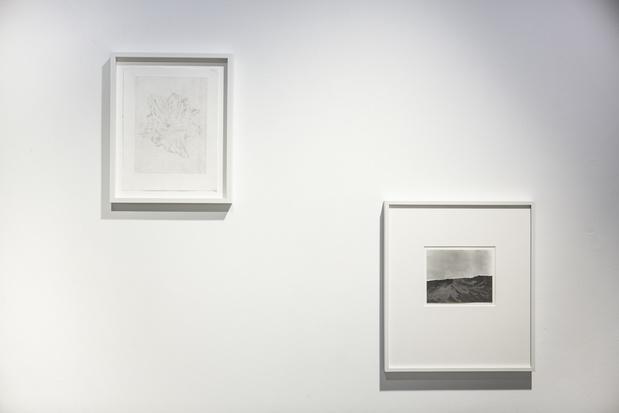 Sabine mirlesse galerie thierry bigaignon paris exposition 15 1 medium