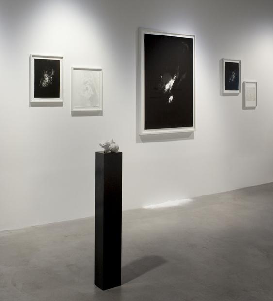 Sabine mirlesse galerie thierry bigaignon paris exposition 19 1 medium