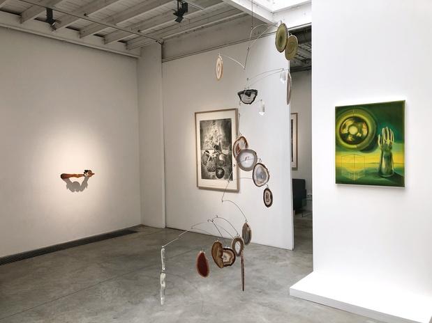 Edouard wolton galerie les filles du calvaire paris exposition 12 1 medium