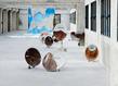 Ouassila arras des histoires d eau vue d exposition photo aurelien mole courtesy les tanneries cac amilly 020 site accueil 1 grid