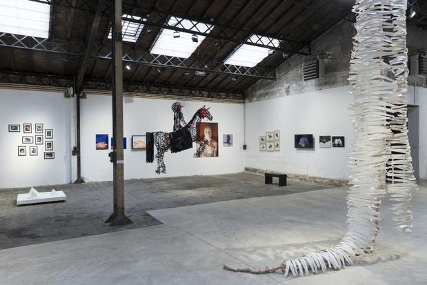 Topographie de l art exposition 9humanimalismes vue ensemble topographie de lart9 1 medium