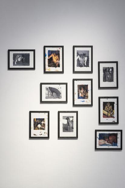 Topographie de l art exposition 10mat collishaw zoophilia2009 collection prive 1 medium