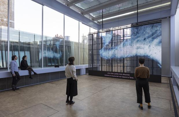 Rachel rose exposition lafayette anticipations 11 1 medium