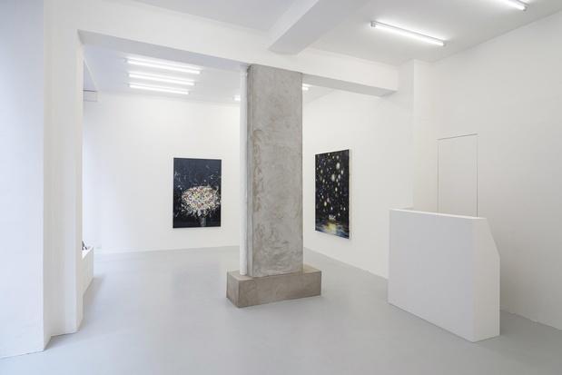 Galerie c paris valerie favre exposition 5 1 medium