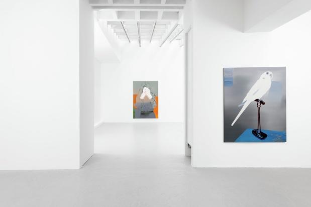 Galerie semiose francoise petrovitch france culture 1 medium