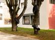Ludovic chemarin ronds dans les arbres 2020 ludovic vue d exposition photo aurelien mole courtesy de artiste et des tanneries cac amilly 3 1 grid