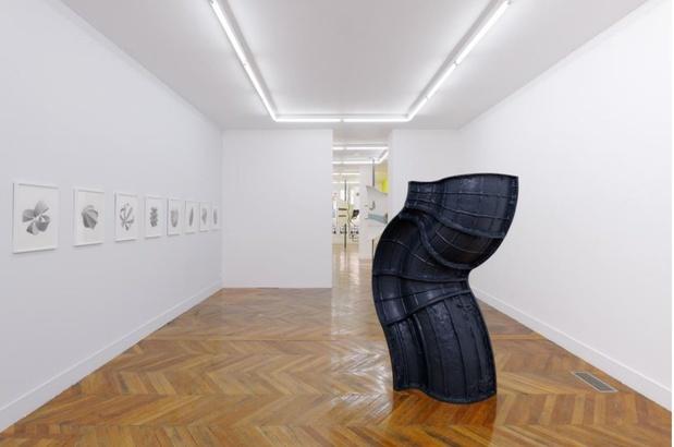 Felix pinquier artiste exposition la galerie noisy le sec 12 1 medium