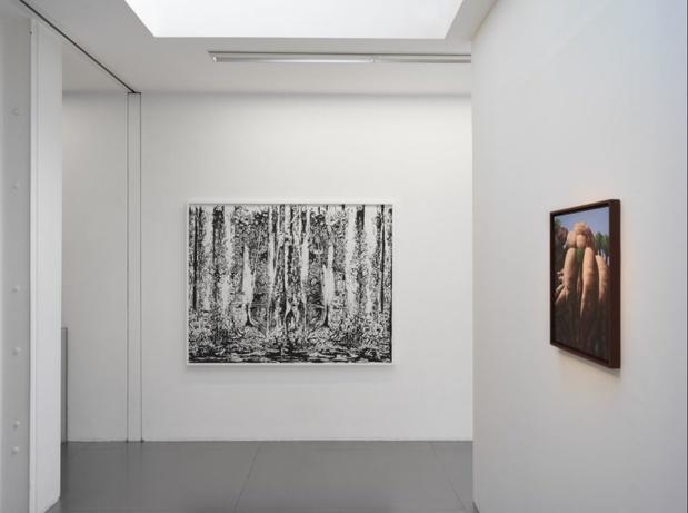Philippe mayaux exposition galerie loevenbruck peinture paris 13 1 medium
