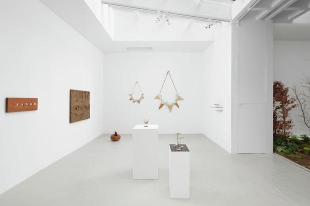 Galerie semiose paris exposition laurent le deunff 5 gs 2020 expo laurent ledeunff 067 1 1 medium