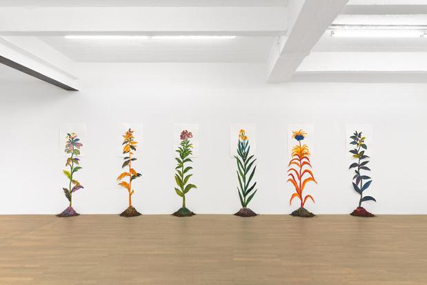 Backslash galerie gallery paris odonchimeg davaadorj exposition 1 1 medium