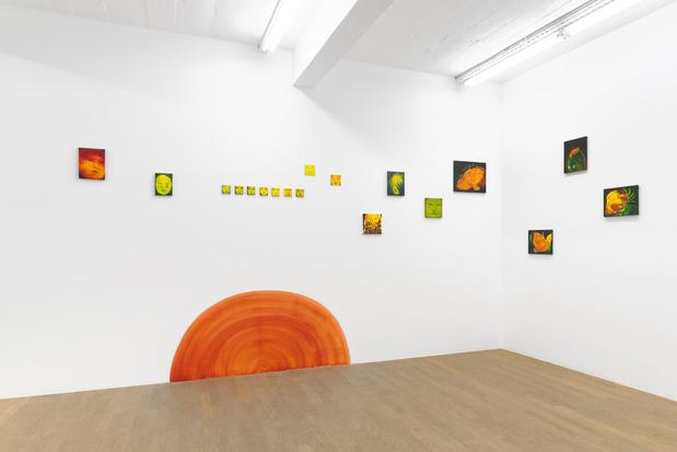 Backslash galerie gallery paris odonchimeg davaadorj exposition 13 1 medium