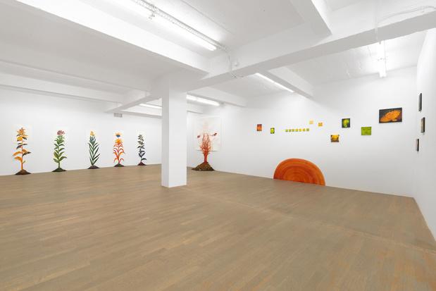 Backslash galerie gallery paris odonchimeg davaadorj exposition 14 1 medium