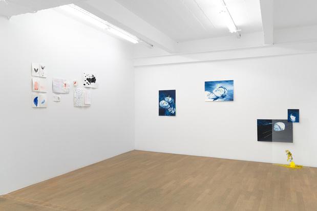 Backslash galerie gallery paris odonchimeg davaadorj exposition 15 1 medium
