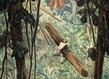 Gpvallois galerie vallois pierre seinturier peinture interview 14 1 grid