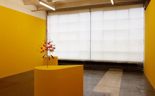 Kapwani kiwanga exposition le credac ivry art contemporain 14 1 medium