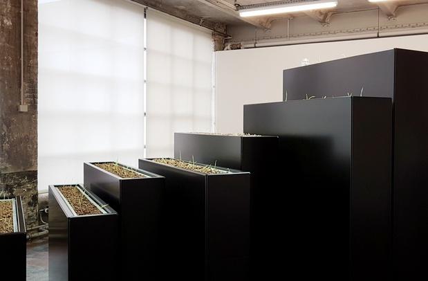 Kapwani kiwanga exposition le credac ivry art contemporain 1 1 medium