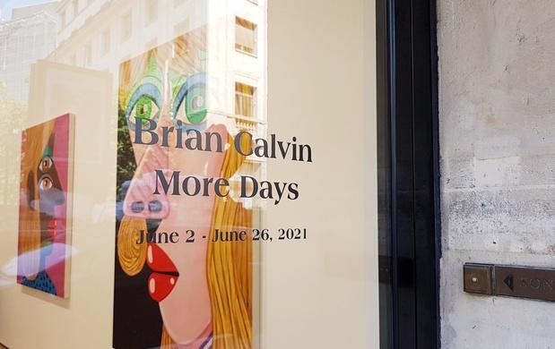Galerie almine rech exposition paris brian calvin artiste 13 1 medium