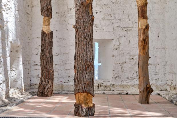 Sara favriau galerie maubert paris exposition 13 1 medium