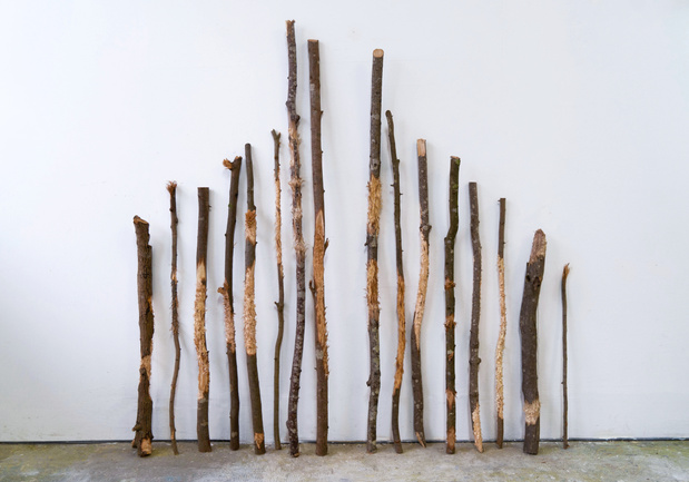 Sara favriau galerie maubert paris exposition 19 1 medium