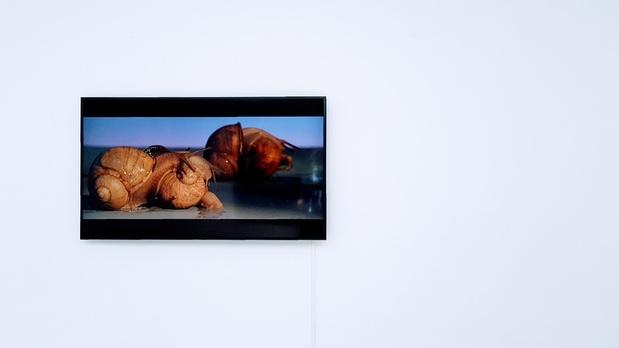 Galerie les filles ducalvaire exposition 12 1 medium