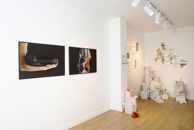 Galerie segolene brossette exposition nicola 1 1 medium