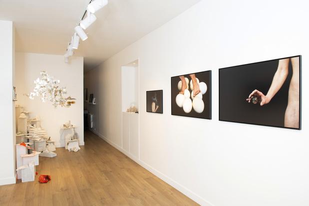 Galerie segolene brossette exposition nicola 12 1 medium