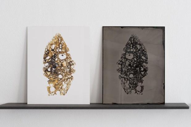 Charlotte charbonnel exposition 5 1 medium