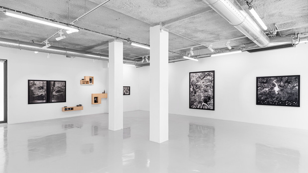 Sylvain ciavaldini galerie sator komunuma 12 1 medium