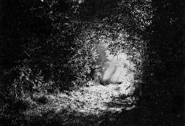 Sylvain Ciavaldini—Galerie Sator