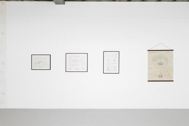 Galerie in situ fabienne leclerc komunuma gisfl 2021 mark dion 008 1 medium