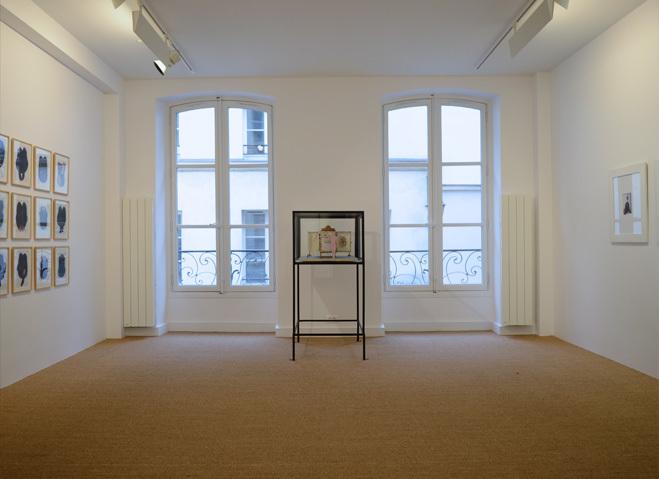 In Situ Gallery,Fabienne Leclerc